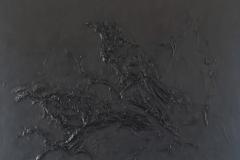 zwarte-raven-2